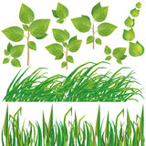 Set of green leaves and grass Stock Photo