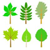 Set of green leaves. Royalty Free Stock Photography