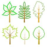 Set of green leaves. Royalty Free Stock Image