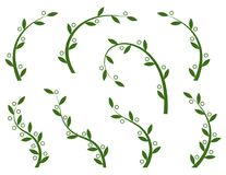 Set of green olive branches. For natural food or olive oil concept symbol royalty free illustration