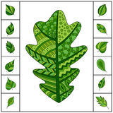 Set of Green Patterned Oak Leaf and Small Simple Leaves. Royalty Free Stock Photos