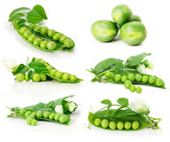 Set of green peas isolated on the white background Royalty Free Stock Photo