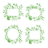 Set of green round and square vector frames Stock Photo