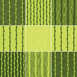 Set of green seamless pattern with vertical lines Stock Image