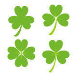 Set of Green Shamrock Symbols Vector. Illustration. Design for St. Patrick's Day Royalty Free Stock Photography