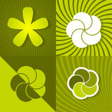 Set a green spring backgrounds with flowers Royalty Free Stock Photos
