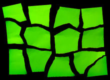 Set Of  Green Torn Paper Stock Image