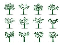 Set of green Trees with Leaves. Vector Illustration. Stock Image