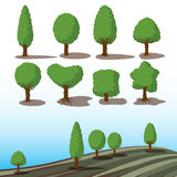 Set of green trees with shadows Royalty Free Stock Image