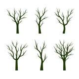 Set Green Trees. Vector Illustration. Set Green Trees without Leaves. Vector Illustration and graphic element. Nature Stock Photos