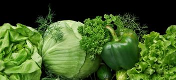Set of green vege-cabbage,lettuce,bell pepper,dill on black at the bottom Stock Image