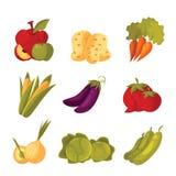 Set of green vegetable farm, garden stuff Royalty Free Stock Photo