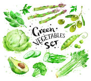 Set of green vegetables Stock Photo