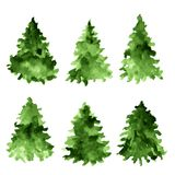 Set of green watercolor spruces. Fir tree collection. Set of green watercolor spruces. Fir tree collection Royalty Free Stock Photos