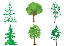 Set of green and white vector trees Royalty Free Stock Image