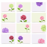 Set of greeting cards with hydrangea flowers. Vector eps-10. Royalty Free Stock Photos