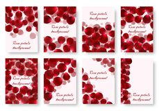 Set of greeting cards with rose petals. A set of greeting card templates with flying rose petals. Vector backgrounds with a floral pattern Royalty Free Stock Image