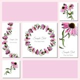 Set greeting and visit card. Hand drawn colored  sketch with wreath of echinacea flowers and  bouquet. Vector illustration Stock Photos