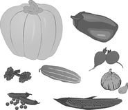 Set of grey vegetables Royalty Free Stock Photos