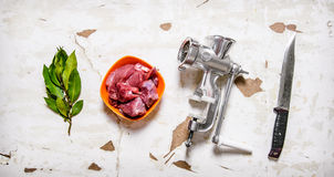 Set - grinder, raw meat, carving knife, Bay leaf. Royalty Free Stock Photography