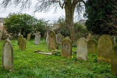 Set grobowowie w Angielskim cmentarzu Fotografia Royalty Free
