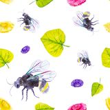 Set of ground bumblebee, daisies and green leaves. Watercolor illustration isolated on white background.Seamless pattern vector illustration