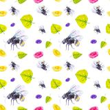 Set of ground bumblebee, daisies and green leaves. Watercolor illustration isolated on white background.Seamless pattern royalty free illustration