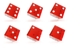 Set, Group of red transparent dice isolated on white background with shadows. 3d rendering Royalty Free Stock Photos