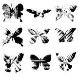Set of grunge butterflies. Grunge butterflies on white background Royalty Free Stock Photo