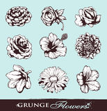 Set of grungy flowers. Layered. Vector EPS 10 illustration Royalty Free Stock Photos