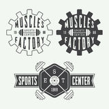 Set of gym logos, labels and slogans in vintage style Stock Photography