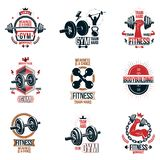 Set of  gym theme emblems and motivational banners compose. D with dumbbells, barbells, kettle bells sport equipment and bodybuilder body shapes stock illustration