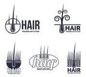 Set of hair transplantation logo templates Royalty Free Stock Images