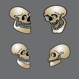 Set of halloween skull Royalty Free Stock Photography