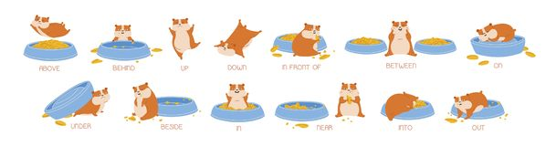 Set of hamster demonstrating English prepositions of place and movement. Bundle of funny animal with feeder and words