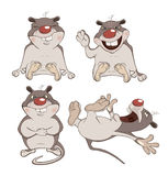Set of the hamsters cartoon Royalty Free Stock Photos