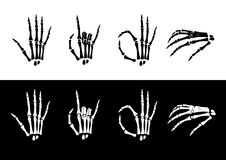 Set of hand anatomy. Royalty Free Stock Images