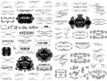 Set of hand-drawing calligraphic floral design Stock Image