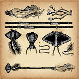 Set of hand drawing ink elements of military weapon and cudgel. Stock Photos