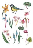 Set of watercolor floral elements with bird. stock illustration