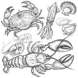 �Set hand drawings of seafood. Royalty Free Stock Images