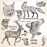 Set of hand drawn animals and flourishes in vintage style Royalty Free Stock Image