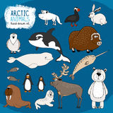 Set of hand-drawn arctic animals Stock Image