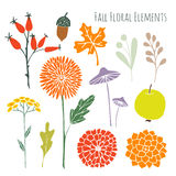 Set of hand drawn autumn fall floral graphic elements, isolated s Royalty Free Stock Images