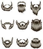 Set of hand drawn beards. Collection of hand drawn beards Royalty Free Stock Photos