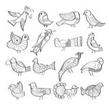 Set of hand drawn birds Royalty Free Stock Images