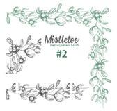 Set of hand drawn botanical sketch mistletoe branches. Vintage style. Traditional christmas decoration. For design vector illustration