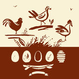 Set of hand-drawn brush rooster, chicken, eggs.   Stock Photography