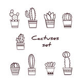 Set of Hand Drawn Cactuses and Succulents in Pots Stock Photos