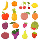 Set of hand drawn, cartoon fruits. Fresh and juicy Stock Image
